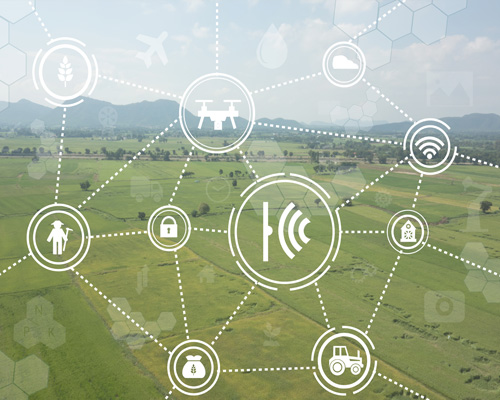 Outcomex IoT Agriculture